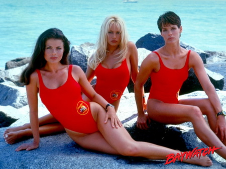 lifeguard noun