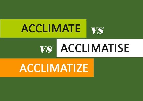 Acclimate vs Acclimatise vs Ac